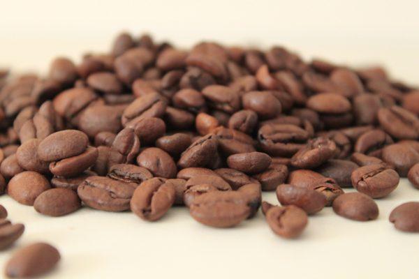 Pas kawowy, czyli gdzie uprawia się kawowce