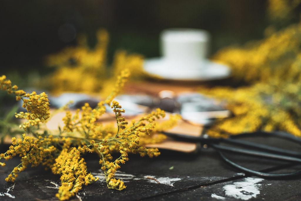 drewniany stół i żółte jesienne kwiaty